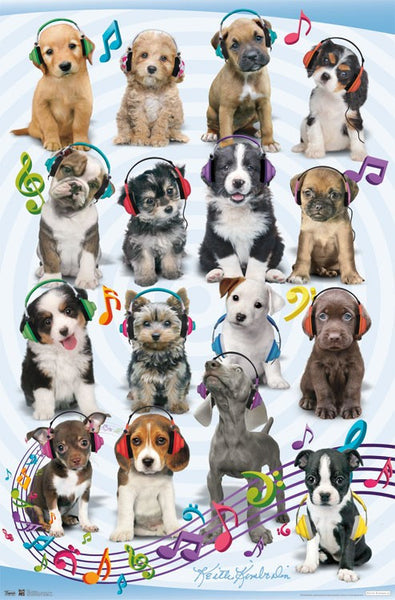 Puppy wearing headphones wall poster