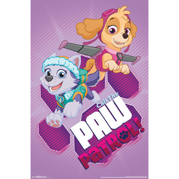 Paw Patrol Girl Pups Poster - Skye Everest