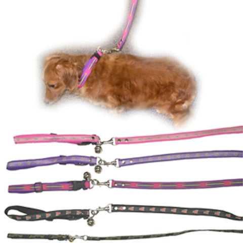 Dog Leash - Assorted Designs