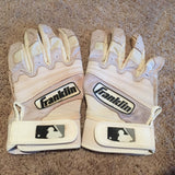 Jacob Scavuzzo 2015 Game Used Batting Gloves (pair)