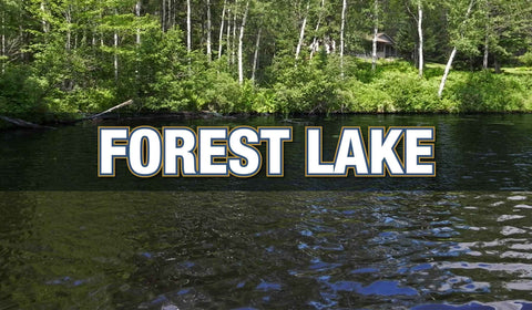 FOREST LAKE MEMBERSHIPS
