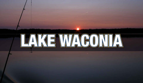 LAKE WACONIA MEMBERSHIPS