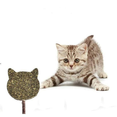 Catnip Stick Teeth Cleaning Chew Toy - 1 - Cat Shape - Cat Toy