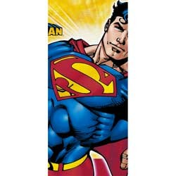 Superman Returns Tablecover