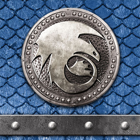 How to Train Your Dragon 2 Movie Birthday Party Beverage Napkins