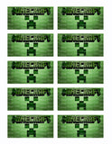 Minecraft Creeper Inspired Edible Icing Sheet Cake Decor Topper