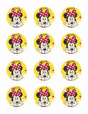 Disney Minnie Mouse Edible Icing Sheet Cake Decor Topper - MMF10