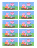 Peppa Pig & Family Edible Icing Sheet Cake Decor Topper - PP3