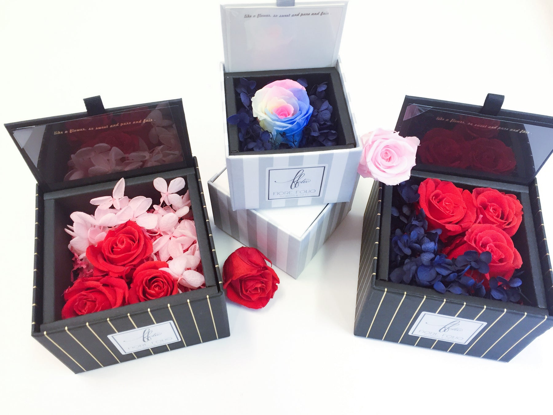 preserved flower in a box