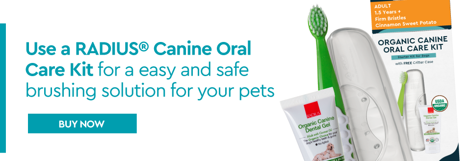 canine oral care kit