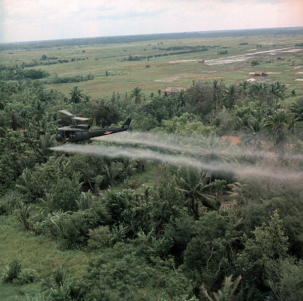 helicopter spraying triclosan pesticide into coconut fields