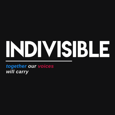 Indivisible t-shirt: together our voices will carry