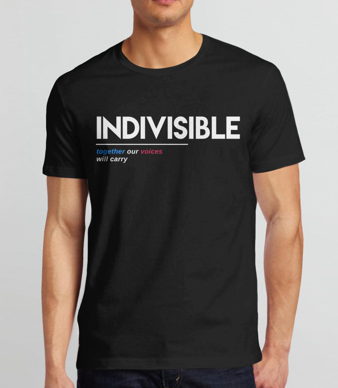 Indivisible t-shirt: together our voices will carry - mens tee