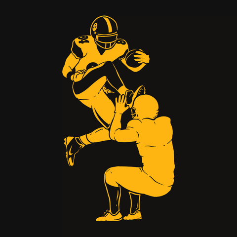 Steelers t-shirt for football fans