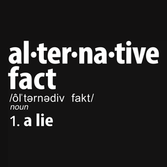 Alternative Fact Definition T-shirt from Boots Tees