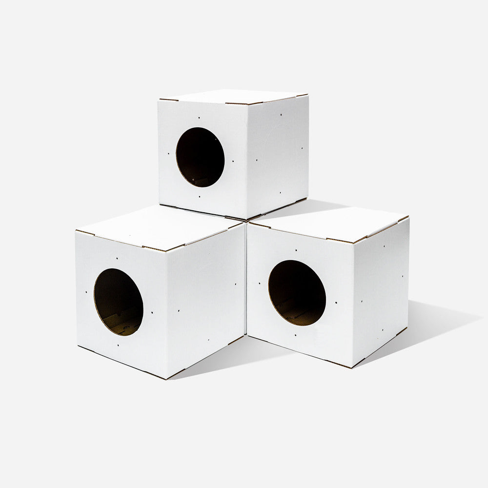 4 Pack White Cat Box Toy