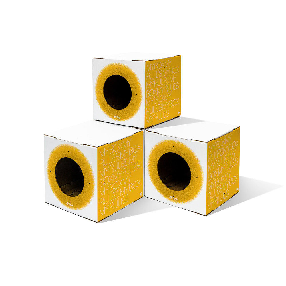 stackable yellow 4 pack cat boxes