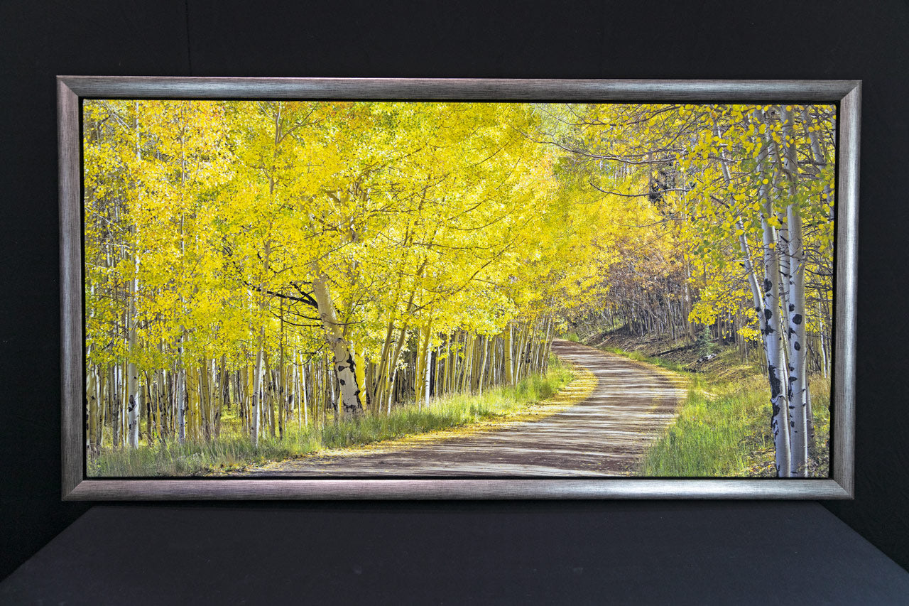 Around the Bend 24x48 Special