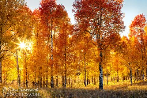 Autumn Splendor at Oxbow