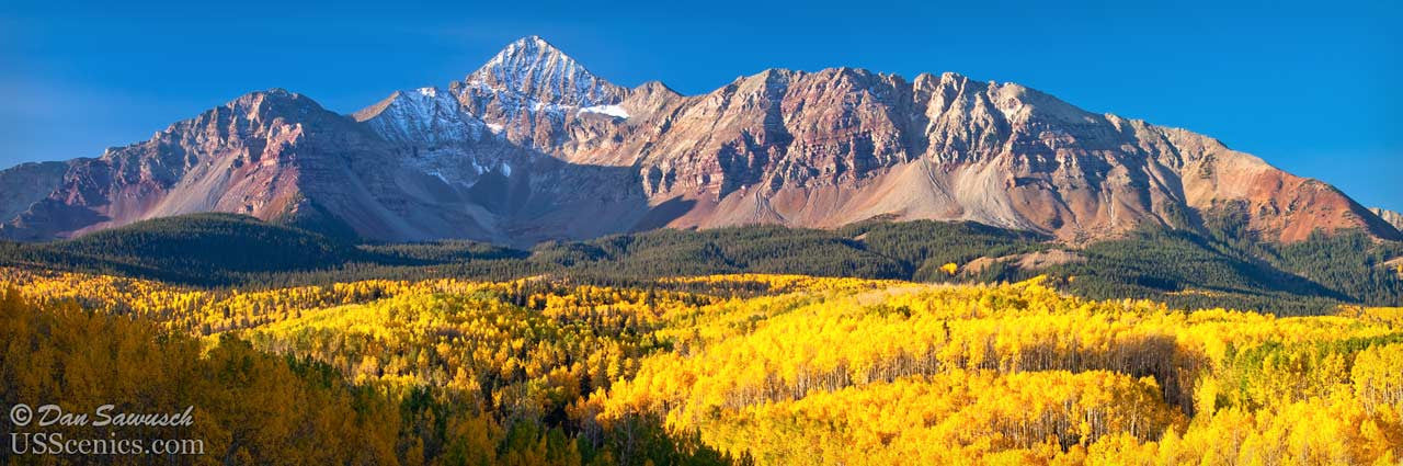 yellow fall aspens in front of wilson peak near telluride colorado