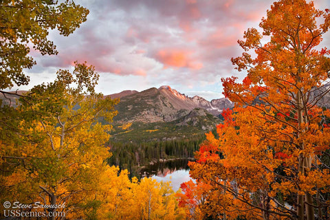 Orange, red, yellow and green fall aspens at a Bear Lake sunset in Rocky Mountain National Park near Estes Park, Colorado