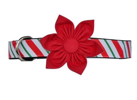 Candy Cane Red Flower Set