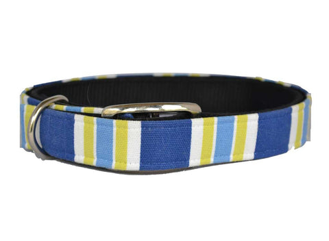 Blue Lime Stripe Cover