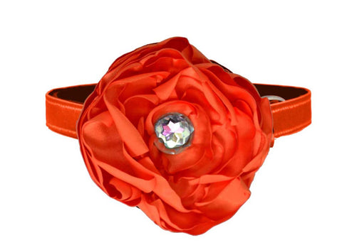 satin orange flower for dog in wedding