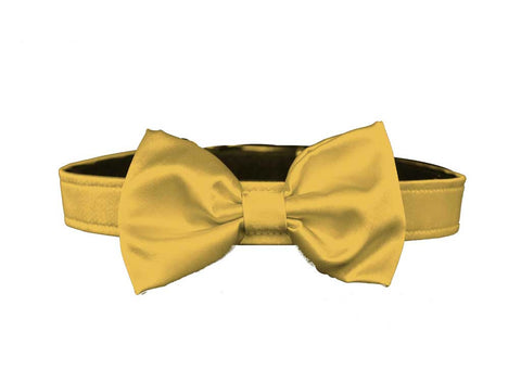 satin gold bow tie for dog in wedding
