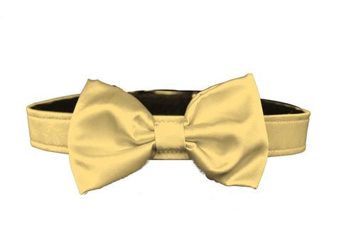 satin butter yellow bow tie for dog in wedding