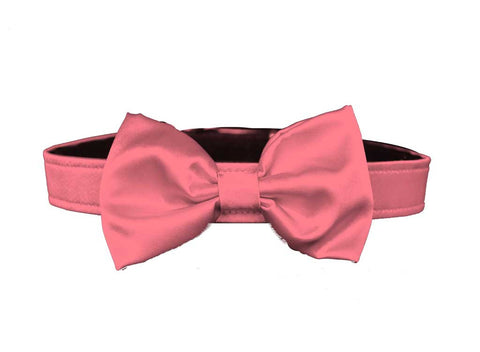 satin coral bow tie for dog in wedding