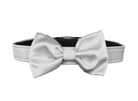 satin ivory bow tie for dog in wedding