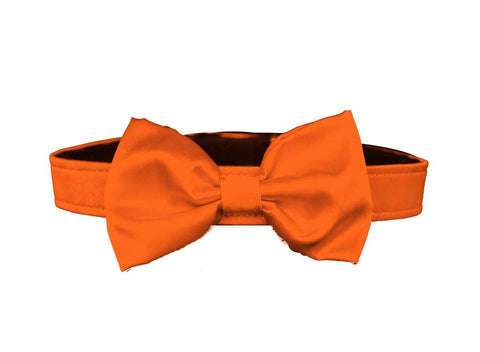 satin orange bow tie for dog in wedding
