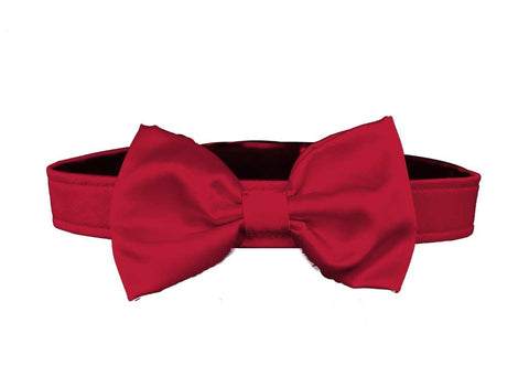 satin red bow tie set for dog in wedding