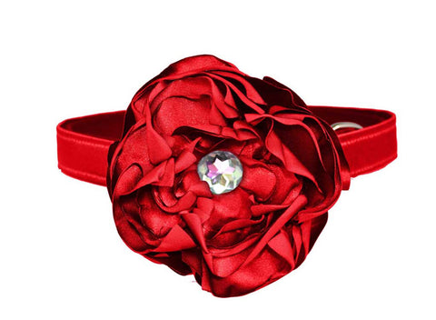 Satin Red Flower Set for dog in wedding