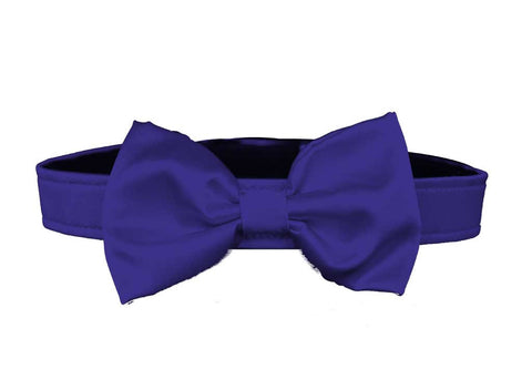 Royal Blue Bow Tie Set for dog in wedding