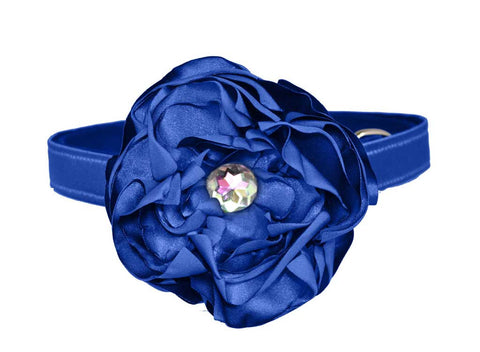 Royal Blue Satin flower set for dog in wedding