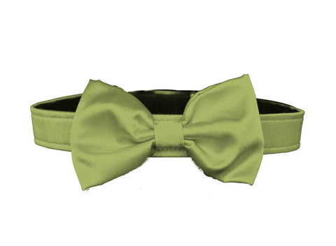 satin sage green bow tie for dog in wedding