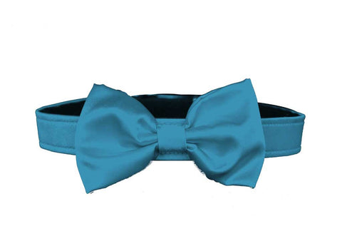 satin turquoise blue bow tie for dog in wedding