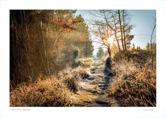 frosty path hemsted forest poster