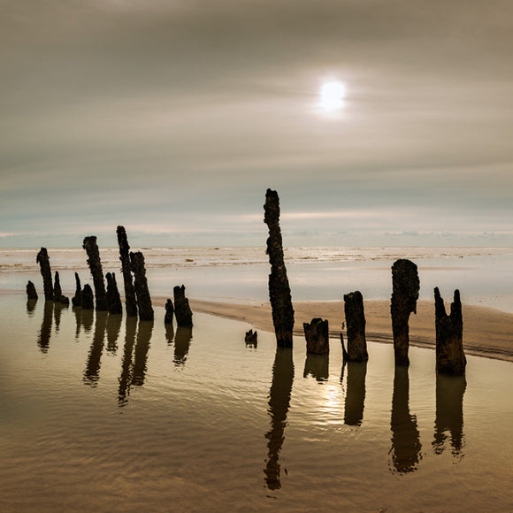 soft sunlight and low tide at winchelsea beach