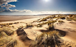 camber dunes in the sun