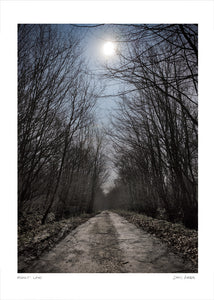 moonlit lane poster
