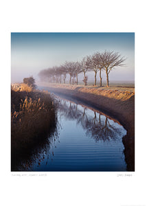 sun and mist romney marsh poster