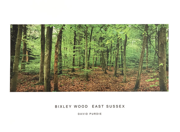 bixley wood east sussex poster