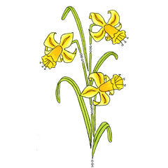 Elegant Daffodils Rubber Stamp From Great Impressions
