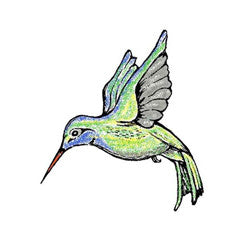 Hummingbird Rubber Stamp From Great Impressions