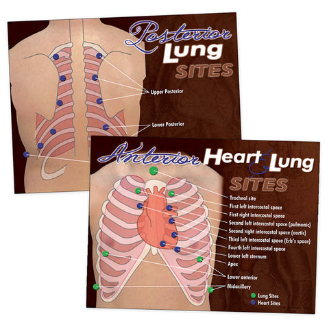 Posterior Heart & Lung Sites Poster