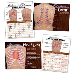 Heart & Lung Sites Visual Aids Complete Set