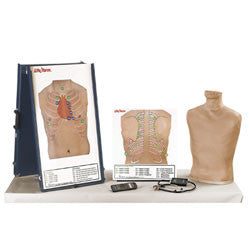 Deluxe Auscultation Training Station